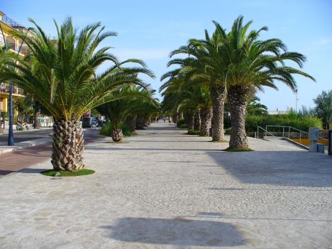 San Benedetto del Tronto, Palm Riviera, Italy