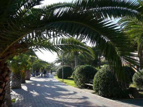 Lungomare, Palm Riviera, Abruzzo, Italy
