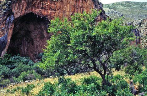 Uzzo Cave, Lo Zingaro Nature Reserve, Sicily, Italy