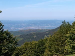 Valdarno, Arezzo, Tuscany, Italy