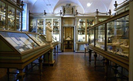 Museo per la storia, Pavia, Lombardy, Italy