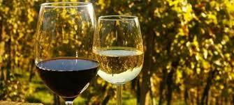 euganean hills wine