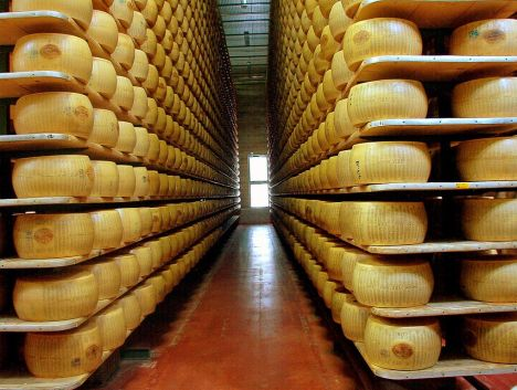 Parmigiano Reggiano - the store room