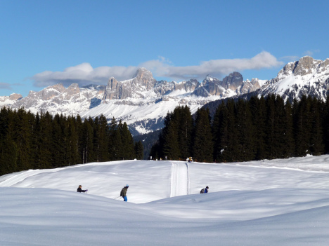 Cross-country skiing, Passo Lavazè, Dolomiti Superski, Italy