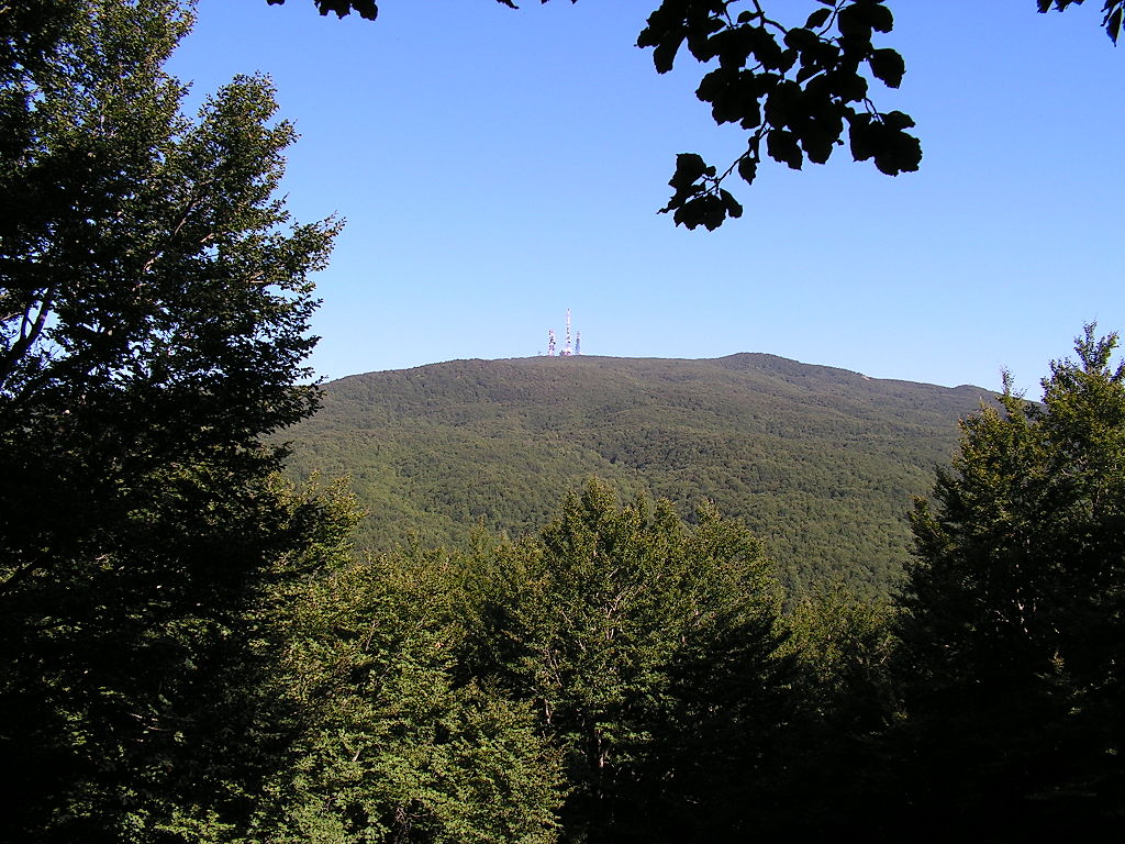 Monte Soro and surrounding forests, Nebrodi Mountains, Sicily, Italy