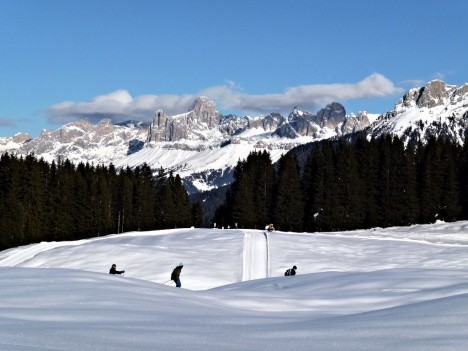 Cross country skiing in Passo Lavazè, Trentino-Alto Adige, Italy