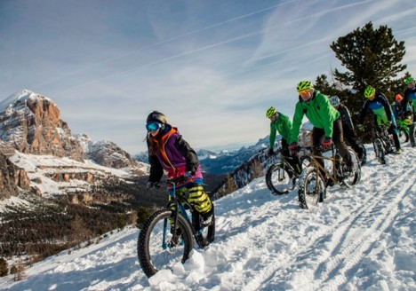 fat bike cortina snow