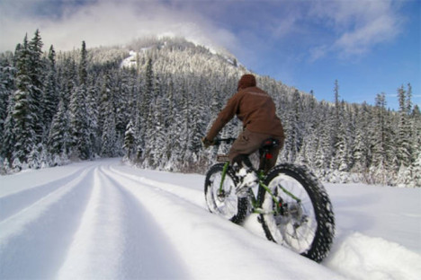 fat bike snow dolomites